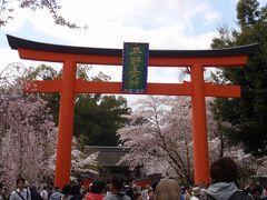 桜の平野神社~2010年4月10日~