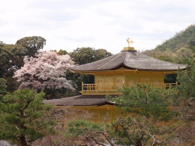 初めての金閣寺。<br />金閣寺は想像通り、いや、それ以上でした。<br />本当に金ピカでした。<br /><br />写真のアングルは、みなさんと同じになってしまいます。<br />でも、あのアングルが最高なんですよね。<br /><br />表紙は旅行記名にピッタリなものを選びました。