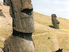 RAPA NUI(イースター島)物語 Part.3 <モアイの森へ>
