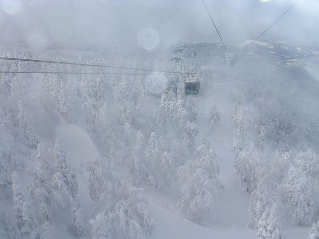 たまには「ベタ」な観光旅行0701  「蔵王樹氷」  ~山形~