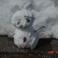 金沢から雪の白川郷へ