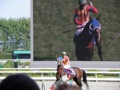 2010年GW 静岡・関西の旅 第1~2日 静岡遠征、京都競馬場
