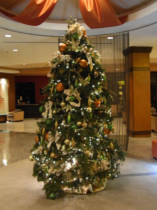 クリスマスinグアム♪<br /><br />南国でもクリスマスツリーとサンタさんはいます。<br /><br />いつも通りの深夜着なので、お部屋に入って夜空を見ながら<br />明日からの天気をお祈りしてのんびりお休み〜するだけですね。<br /><br /><br /><br />NW286便