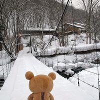青森で温泉に入るクマ~その3(温川温泉)