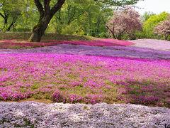 館林散歩・1 ~ぶんぶく茶釜と野鳥の森ガーデン