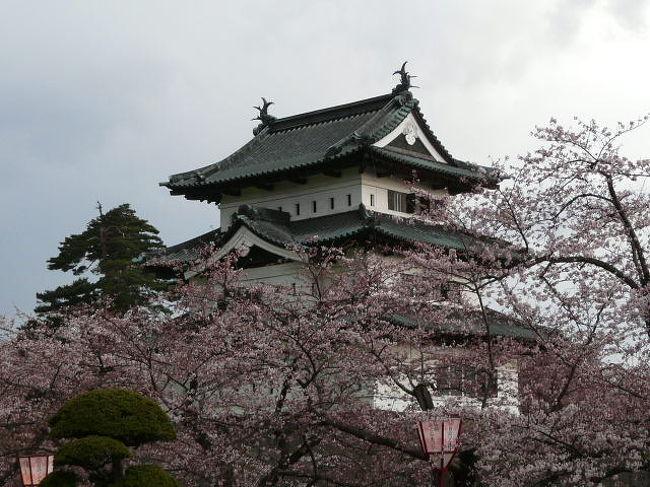 本来なら東北の桜を見ながら北上してくればいいのだろうが予算の都合でいきなり弘前に来てしまった<br /><br />新聞ではまだ咲き始めという情報だが観光協会で聞いてみると両脇の堀の辺りなら3分〜4分咲きだというので 夕方になってしまったがいてみることに<br /><br />う〜ん ちょっと早かったが見れる状態だ<br />それよりも途中で雨に降られてしまい途中で断念<br /><br />リベンジを誓って後にした<br /><br />5月4日に再訪しました<br />満開でいいかんじでした<br />http://4travel.jp/traveler/tioman/album/10455838/