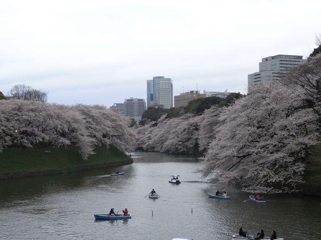 くもりだったので、写真の見栄えはよくないかもしれないですが<br />満開の桜には圧倒されました。<br /><br />きれいなピンク色。<br /><br />晴れていて早い時間だったらボートに乗りたいナ。<br /><br />そして何より靖国神社の出店が魅力★★<br /><br />座るところもたくさん用意してあって、<br />出店も見たことないくらいたくさん出ていたので楽しかった。<br /><br />来年も来ようと思います!