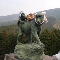 2010年1月宮崎・鹿児島旅行「幸島のサル、都井岬の岬馬」