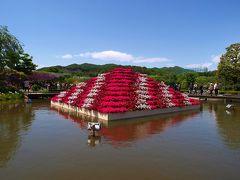 美の饗宴  足利フラワーパーク の花達 (中)