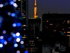 モナの世界の夜景(東京タワー  2010~ )