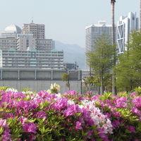 六甲アイランドの風景 10春 [写真版]