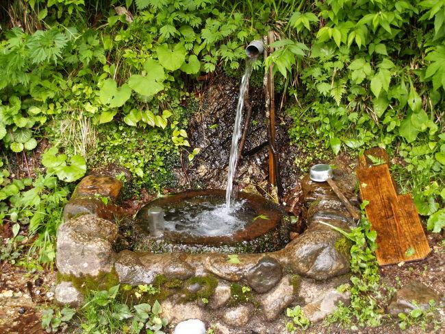喉が渇いた時に冷たくて美味しい水がいただけたら、この上ない喜びだ。旅先で見つけた古来からの名水や実際に飲んでみて美味しかった水を紹介する。今までに一番美味しかったのは、山形県大鳥池間近で山道脇に流れる沢の水を飲んだときであった。気に入っている清水は新潟県日本国山麓にあるラジウム清水である。10&#8467;ほどポリ容器で持ち帰り、テニスクラブの面々で飲んだが皆口々に美味しいと言っていた。こうした水がペットボトルで売り出されたらきっと買って飲むだろう。<br /> 岩手県岩泉にある龍泉洞で飲んだ水は石灰岩が溶け出してカルシウム分が多い。昔飲んだ、新潟県田上町(現五泉市)の大沢鍾乳洞の向かいの沢水の味に似ていると思った。昨年、たまたま鎌倉海蔵寺で会った2人づれのおばさんたちがこの田上から鎌倉見物に来たのだそうだが、聞くとこの沢の水は今ではなくなってしまっているそうだ。地元の人でもなかなか行かないようなところを知っていたので、少し怪訝な顔をしていた。<br /> 井戸水・湧水には硬水と軟水があり、日本国内では軟水が多い。この呼び名は、料理や酒造りから来ているようだ。元々、カルシウム(Ca) 、マグネシウム(Mg)は、食品などを硬くする性質があり、カルシウム、マグネシウムが多く含まれ食べ物を硬くする性質がある水を硬水と呼び、成分が少なく食べ物を軟くする性質の水を軟水と呼んでいる。<br /> 名水が必ずしも美味しいとは限らず、水温や気温、あるいは運動後で体温が高いとか喉が渇いているとかの条件で水の味も変わる。しかし、コーヒーや炊飯には水道水よりも格段に味が良くなる。世界各国でも生水がそのまま飲める国はさほど多くはないと言われている。幸いなことに日本では全国のどこでも生水として飲まれて来た井戸水・湧水は、誰が飲んでもあたることはない。旅にでたら、旅先での名水をごくんと飲み干したいものだ。<br />(表紙写真は日本国登山口手前のラジウム清水)