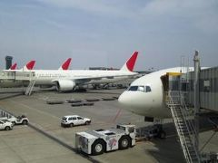 JALマイルで行くシンガポールの旅①