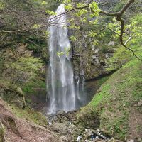 『霧ヶ滝』は素晴らしい滝でした!◆2010年5月・兵庫県北部の滝めぐり【その3】