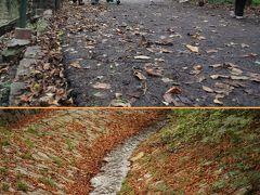 ウィーン・ザルツブルグの旅⑥ハイリゲンシュタットのベートーヴェンの散歩道・小川 Beethovengang  in Heiligenstadt.