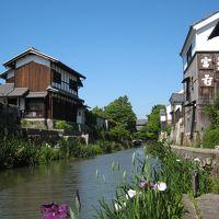 入梅前の晴天の下、花菖蒲が彩り添える商家町・近江八幡を歩いて~近江のむかし町をあるく~