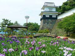 《春から夏へ。。。四季風流に興じる 花菖蒲園》