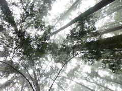 南紀周遊きっぷ旅(2010年初夏)④ 3日目