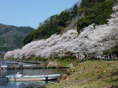 滋賀県(湖西)マキノ海津大崎18きっぷ旅(2010年春)