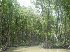 週末ホーチミン!とマングローブの森