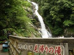 2010 佐賀県の花見 紫陽花としょうぶ
