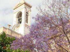 ギリシアの旅 −1 ジャガランターが咲く「アテネ」が旅の始まり