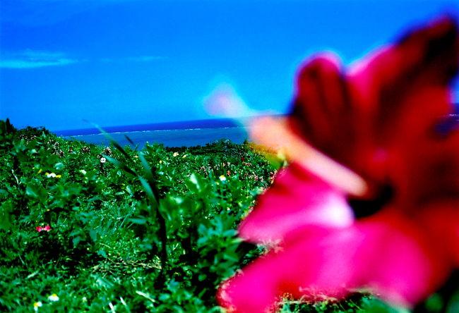 雨期の石垣島、竹富島、波照間島での旅写真と、思ったこと。<br />6日間の、ひとり旅の記録です。