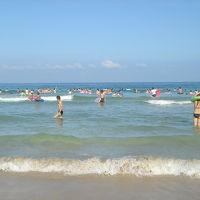 《2006年8月》白浜in伊豆 2 (静岡県)