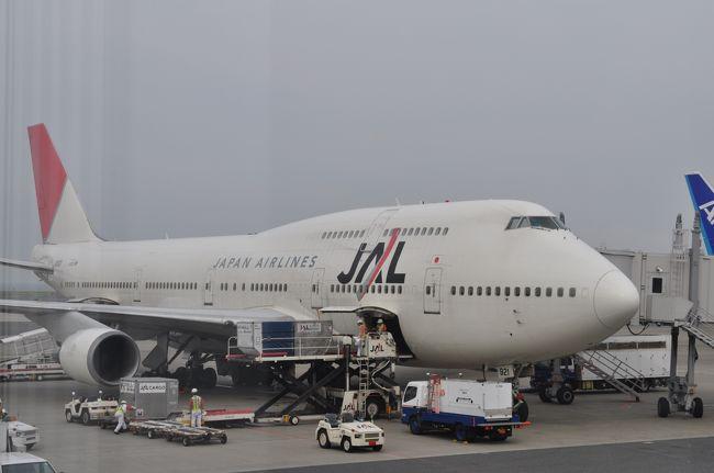 2010年6月韓国鉄道旅行1(JAL便で羽田乗り継ぎ金浦空港へ)