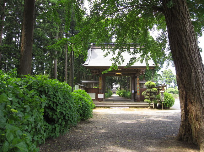 あじさい公園から2,3kmの所に有る日本寺、名前がなんともすごいので足を伸ばしてきました。<br />境内のあじさは、こちらも殆ど咲いていない状況でした。この寺は日蓮宗の本山で、壇林(日蓮宗の僧侶の教育機関)が有り僧侶の教育を行っていたようです。<br />絶好の日和に恵まれ境内を気持よく歩くことが出来ました。