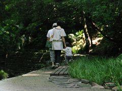 東京23区にも渓谷があるんです!~等々力渓谷散策&自由ヶ丘でお得なイタリアンランチ~