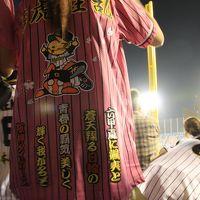 首位が見えたぞタイガース ヤクルトVS阪神 大勝利の野球観戦