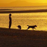沖縄/竹富島でコンドイブルーの癒しの休日を@ゲストハウスたけとみ(2010年7月)