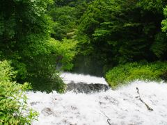 奥日光湯元温泉「ゆの森」でまったり!早朝の湯の湖一周ハイキングと迫力満点の華厳の滝