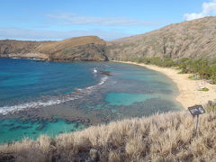 初ハワイ2日目ハナマウ湾でスキューバ