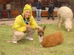 なみお&みすたぁのなんちゃって世界一周旅行 ペルー・インカ・エクスプレス