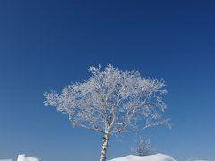 2010.02北海道登別のたび ウィンザーホテル洞爺湖