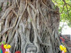 タイ アユタヤ世界遺産旅行記 ワット・プラ・マハタート寺院編