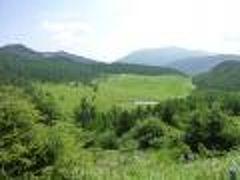 優雅な避暑地 上信越高原国立公園:Vol2 湯の丸高原・池の平 高山女王コマクサ