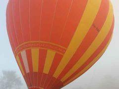 ゴールドコースト 自然満喫の旅 6日間 No.4 熱気球ツアー・アフタヌーンティー・街歩き