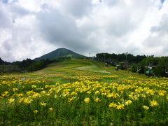 優雅な避暑地 上信越高原国立公園:Vol4 鹿沢ゆり園