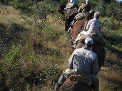 2010 アフリカ旅No.2 メインエベント ジンバブエ側のビクトリアフォールズ
