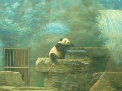 『北京を識ろう!』パートⅢ:リピーター編①~北京動物園、琉璃廠・大柵欄など~