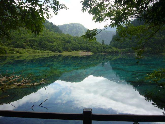 2010/8/14~22、北京に単身赴任中の主人と夏休みを過ごすために、久々に中国に行きました。今回は主人のマイレージを使って北京まで行き、北京から2泊3日で九寨溝・黄龍のツアーに行きました。<br /><br /> 本旅行記は「九寨溝・黄龍ツアー」編です。いよいよ九寨溝ハイキング。天候もやや曇り&晴れ。期待も高まります。朝8:00にホテルを出発し、専用シャトルバスで世界遺産・九寨溝の湖沼をめぐります。午前は日則溝景区、午後は則査窪溝景区と樹正溝景区を観光し、夜はオプショナルツアーでチベットショーを鑑賞しました。<br /><br /><br /><旅程>(◎はこの旅行記)<br /> 8/15(日)CA4122便(北京11:50発→九寨溝13:40着)で九寨溝へ<br />      九寨溝着後、甲藩古城・甘海子散策をし、ホテルへ<br />◎8/16(月)九寨溝ハイキング<br /> 8/17(火)ホテル出発し川主寺経由黄龍へ、午後黄龍ハイキング<br />      3U8897便(九寨溝21:35発→北京23:20着)で北京へ<br /><br /><宿泊><br /> 九寨溝シェラトン<br /><br /><費用><br /> ランド費:3600元/1名(宿泊、食事、送迎、入場料、現地ガイド)<br /> 航空券:行き2080元、帰り1880元<br /> 合計:7560元(約95,000円)