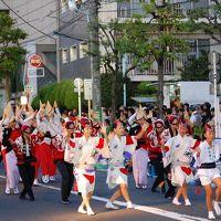 高円寺 東京阿波踊り 2010 (動画追加2014年)