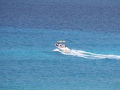 【ダイビング・コスメル編】初めてのカリブ海♪200匹のジンベェとカリビアンブルーの海に出会う旅