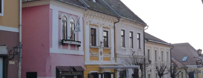 2009 01 ハンガリー センテンドレ