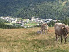 ゆったり滞在スイス