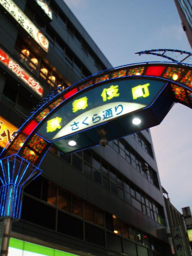 箱根までロマンスカーで行くために新宿で前泊をしました。<br />利用したのは、JRと宿泊券のパックです。<br />新宿といったら歌舞伎町!<br />夜の散歩に出かけました。