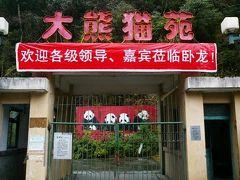 パンダに会いに 臥龍大熊猫保護センター!